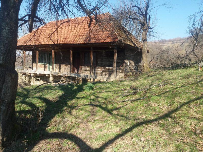 Bera Ioan,sat Dupapiatra(Valea porcului),utilitati curent,teren 1,20 HA,nr tel 0729.943.285