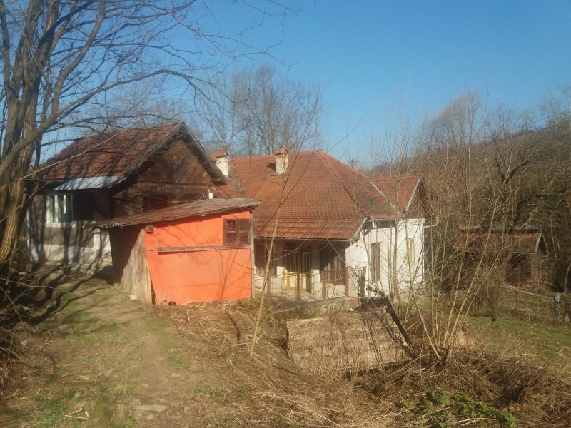 Onea Candin,sat Tarnita,suprafata 0,30 ari,utilitati apa,curent,nr.tel 0786.181.204